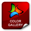 Color Gallery